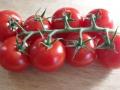 Fadenkäse-Tomatensalat-5